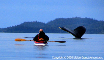 Kayaker and Humback Whale Tail